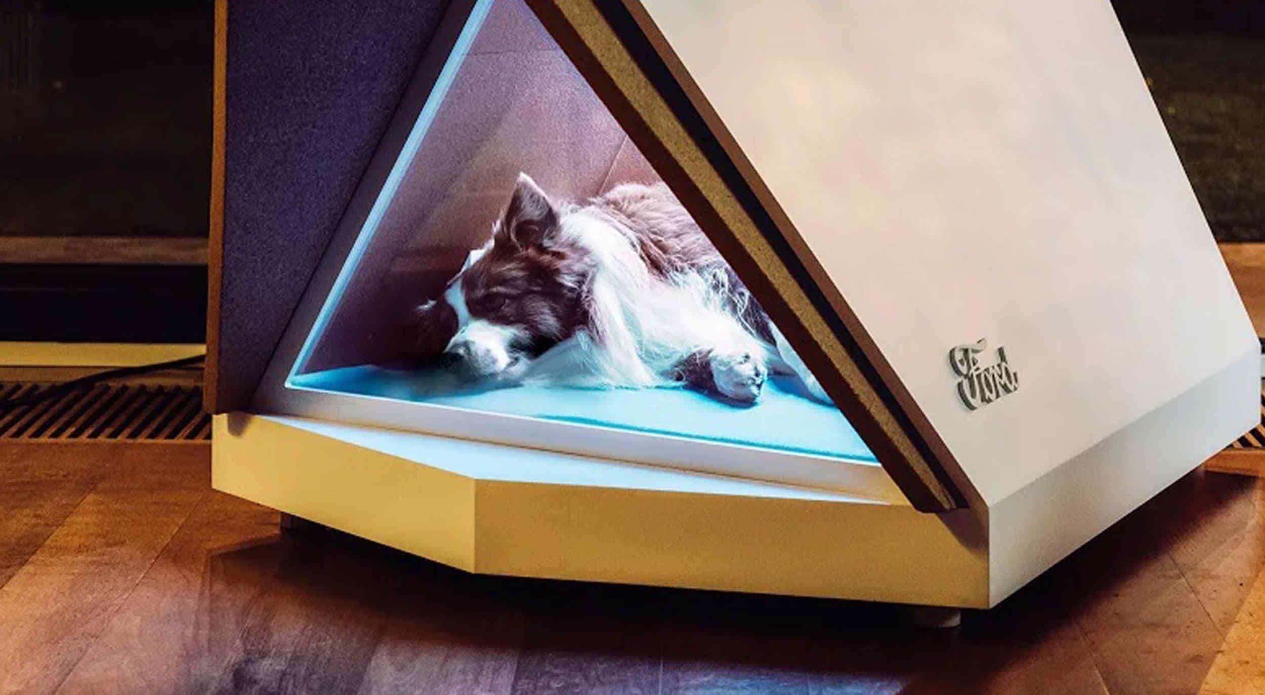 Ford crea casa para perros que elimina el ruido de los fuegos artificiales